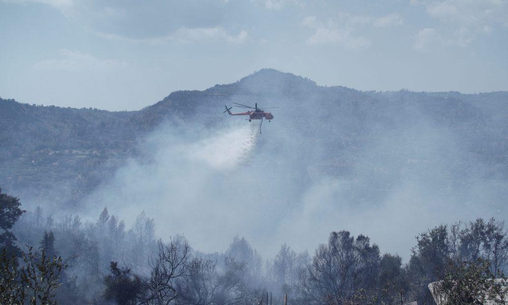 Yunanistan'da orman yangınları sürüyor: Yüz binlerce dönümlük alan küle döndü