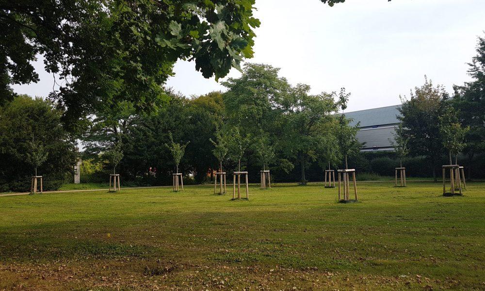 NSU kurbanlarının anısına ağaçlık: Ahlen'deki açılış töreni 26 Ağustos'ta