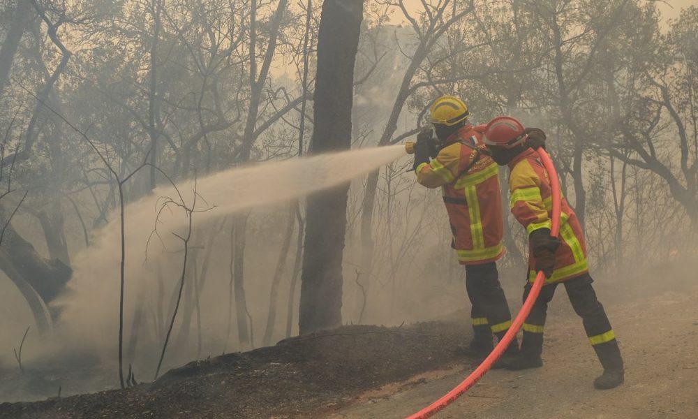 Fransa'nın Var bölgesindeki yangın 5 günde kontrol altına alınabildi