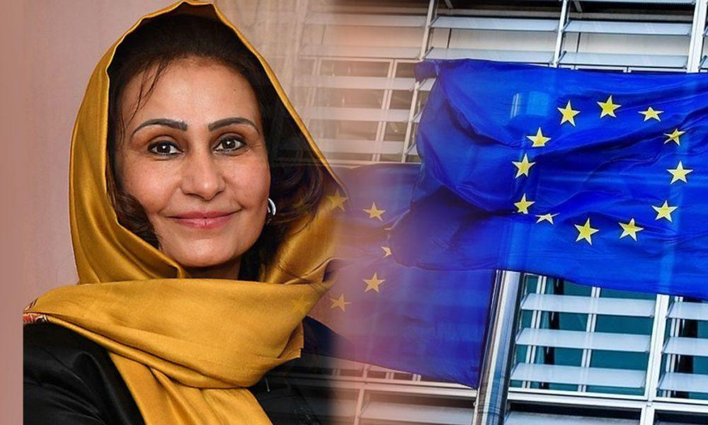 """Afgan Büyükelçisi, Taliban'ın kendisini görevden alamayacağını savundu: Viyana'da """"örnek olay"""" mı?"""