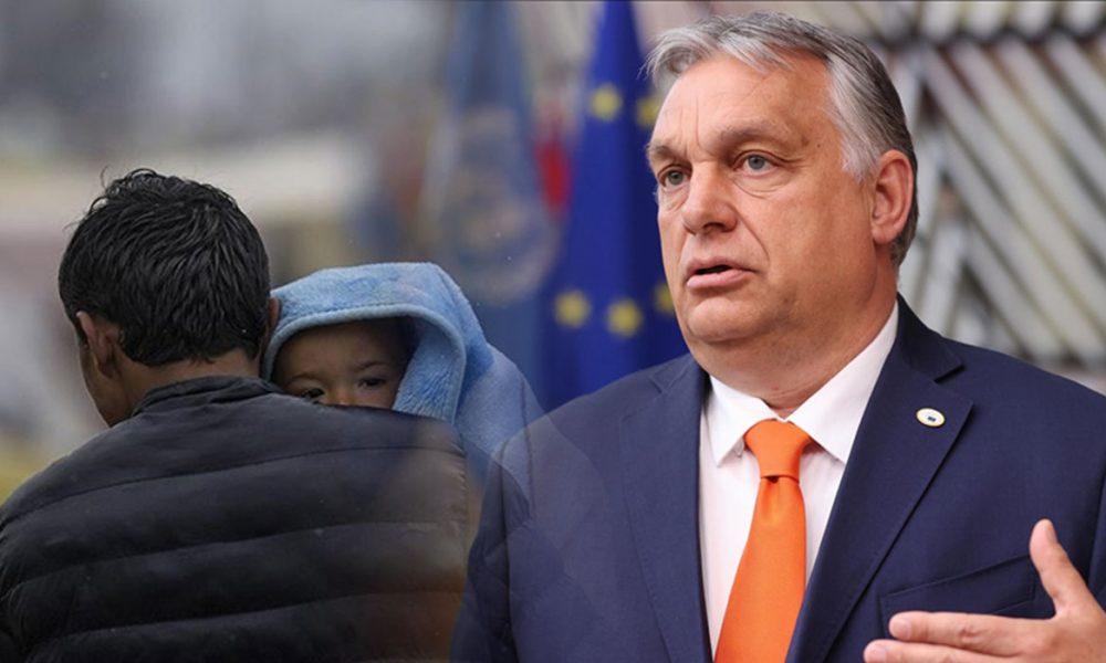 Vişegrad Grubu ülkeleri: AB, Mısır'a sığınmacı konusunda destek vermeli