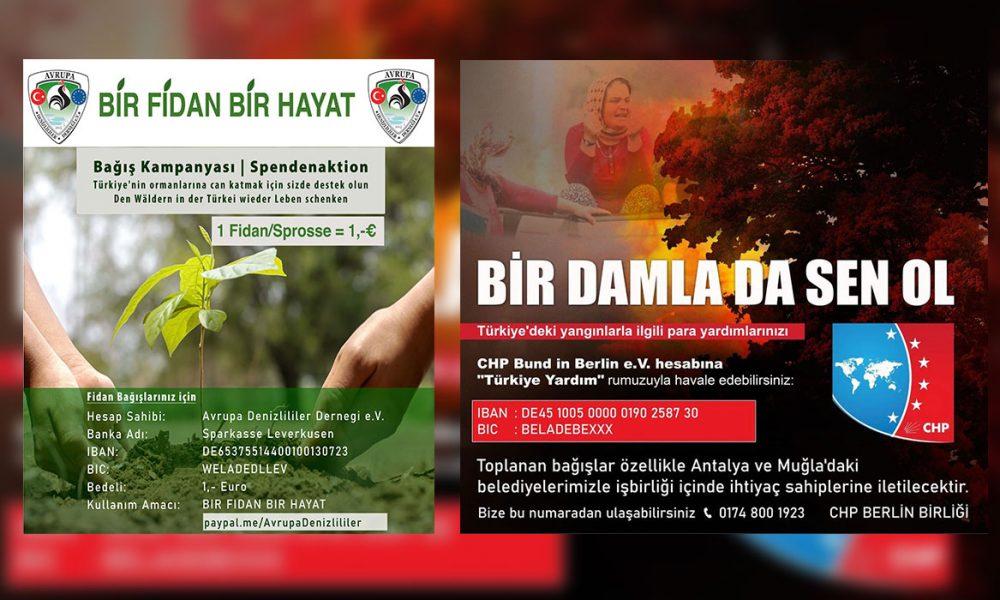 Türkiye'de orman yangınları: Avrupa'dan yardım kampanyaları