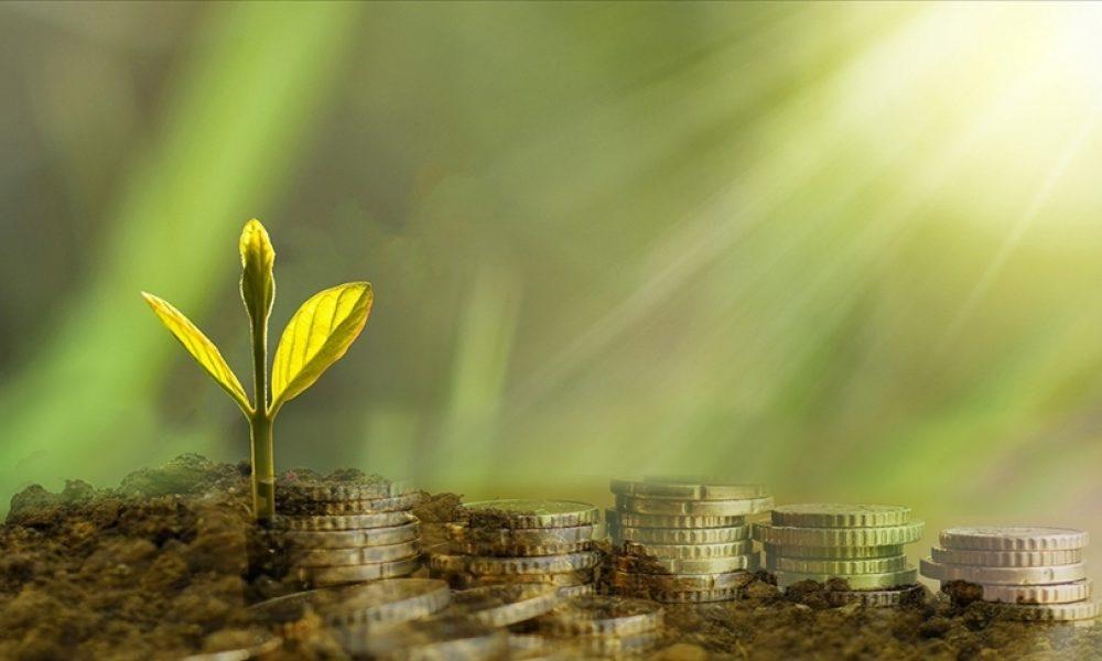 Yeşil Mutabakat: Türk şirketlerini AB'ye ihracat yaparken yeşil zorunluluklar bekliyor