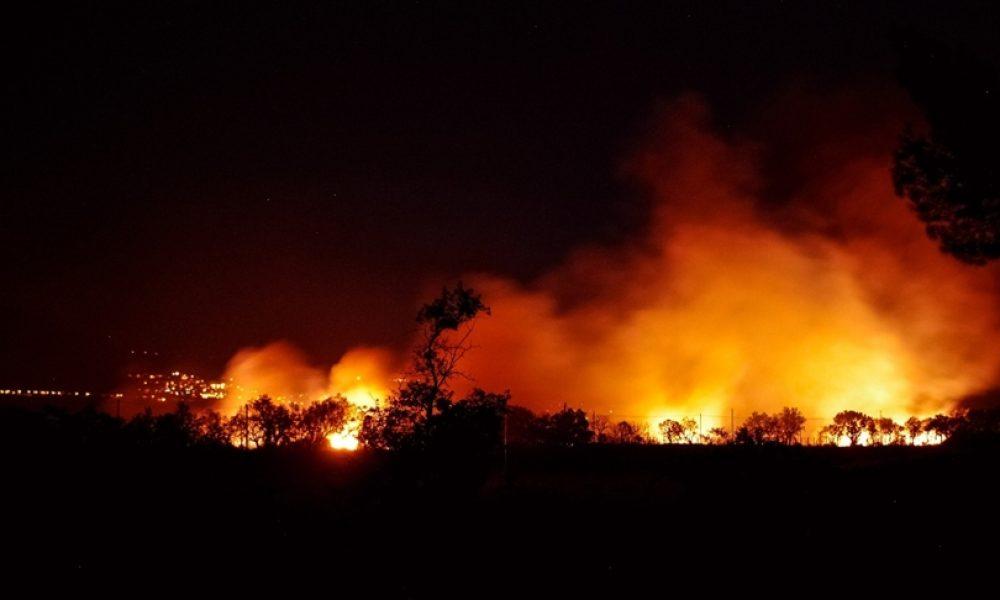 Fransa'nın güneyindeki orman yangını: Halen kontrol altına alınamadı