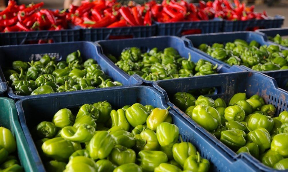 Almanlar sebze ve meyveye daha fazla para harcıyor: Balık geride kaldı