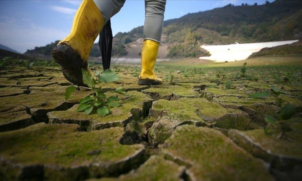 """İklim değişikliği ile mücadele: """"Uyum eylemleri hayata geçirilmeli"""""""